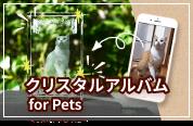 クリスタルアルバム for Pets