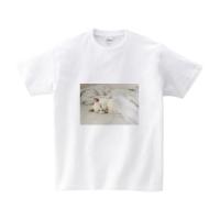 ねこのかわいい寝顔Tシャツ(ヘビーウェイトTシャツ L ホワイト)