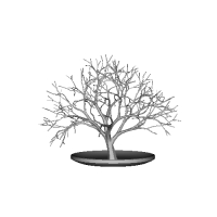 Tree_model01.obj