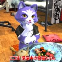 雪猫カゥル「考える猫のポーズ」