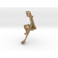 3D-Monkeys 286