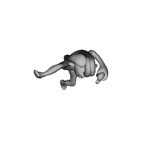 3D-Monkeys 301