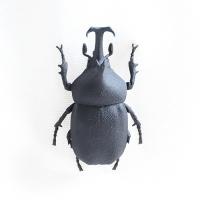 3Dプリント カブトムシ
