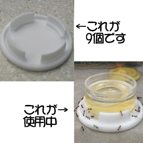 アリ用液餌給餌台 低型ケース用9個組