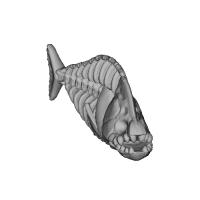 ピラニア魚骨 左 アクセサリ