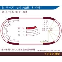 旧)緩和曲線道床素材 NTk-S-TC-S 30 R1-103 Oval