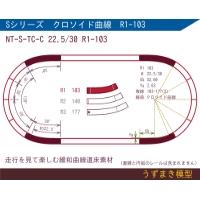 緩和曲線道床素材 NT-S-TC-C 22.5/30 R1-103 Oval