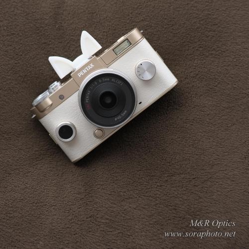 シュー用ドレスアップパーツ (猫耳)  [MRO-DS-CAT-01]