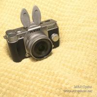 シュー用ドレスアップパーツ (ウサギ耳)  [MRO-DS-RAB-01]