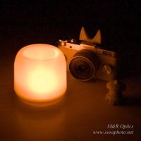 シュー用ドレスアップパーツ (キツネ耳)  [MRO-DS-FOX-01]