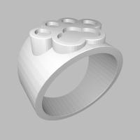猫の肉球型白印指輪 ring_16_16_2-0-0-t1.6-0_s48_d19_vec