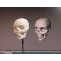 ローポリ頭蓋骨