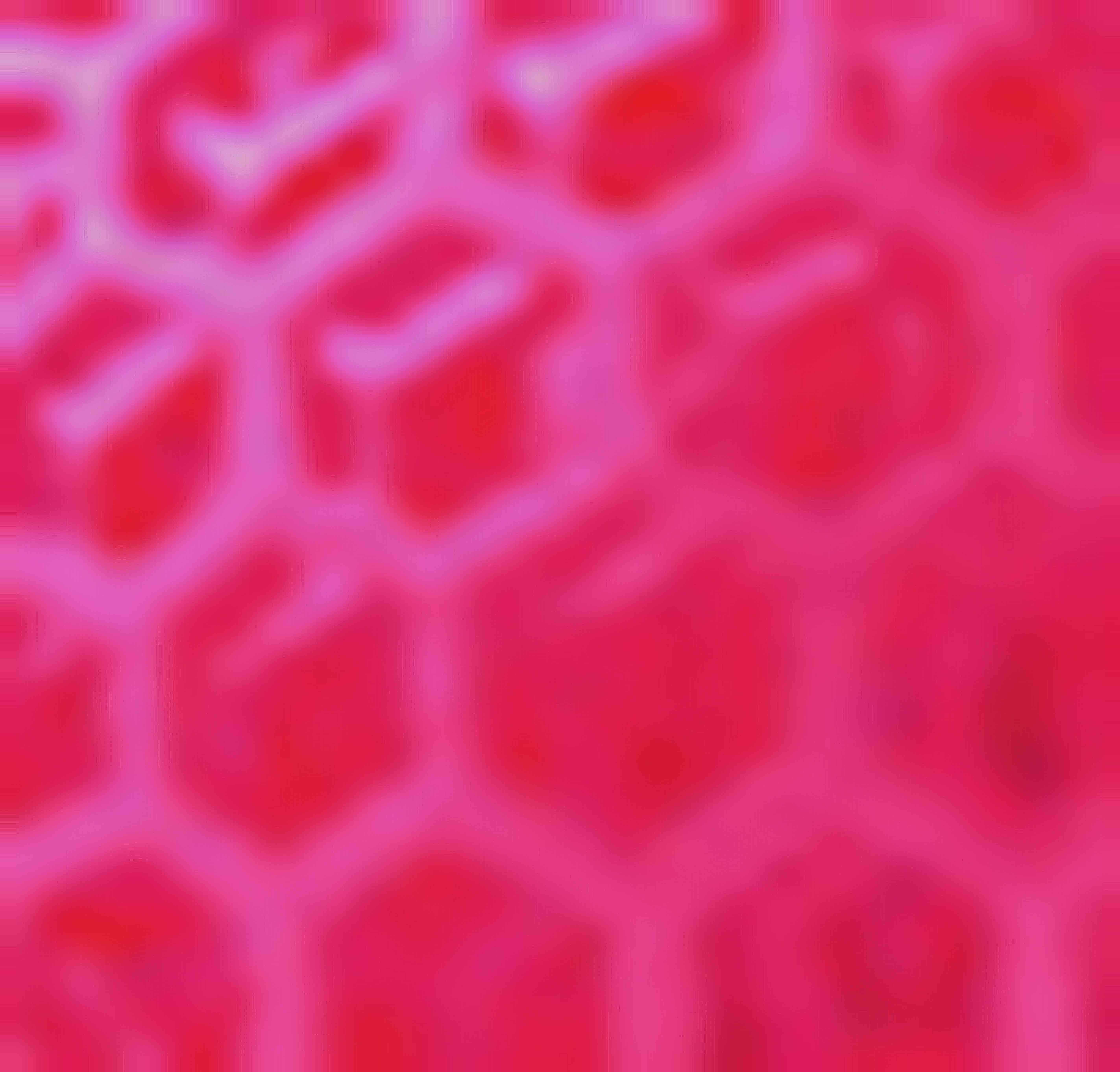 アクリル(Ultra Mode) 蛍光ピンク