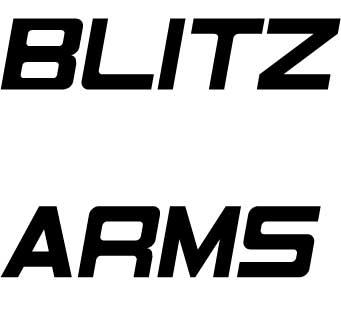 BLITZ ARMS DMM店